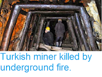 http://sciencythoughts.blogspot.co.uk/2013/10/turkish-miner-killed-by-underground-fire.html