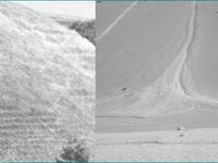 Tenaga Endogen dan Eksogen Pembentuk Litosfer Bagian 6 Masswasting dan Sedimentasi