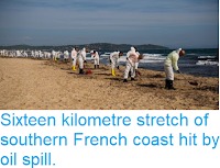 https://sciencythoughts.blogspot.com/2018/10/sixteen-kilometre-stretch-of-southern.html