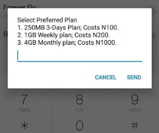 MTN deal zone 4GB for N1000, 1GB for N1000, 250MB for N100