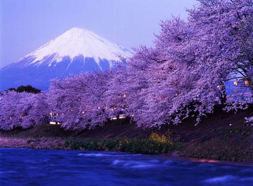 Jepang memilki salju terindah dan terbaik di dunia