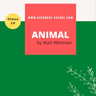 HSLC SEBA English Solutions | Class 10 | Animal by Walt Whitman questions answers