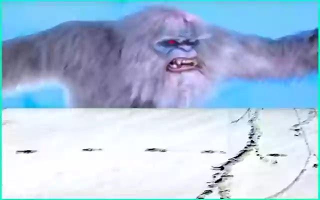Indian-Army-Himalayas-Saw-Snow-Yeti-Footprints