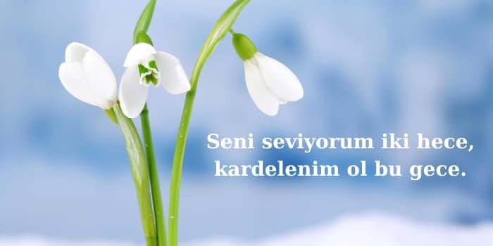 kardelen çiçeği sözleri
