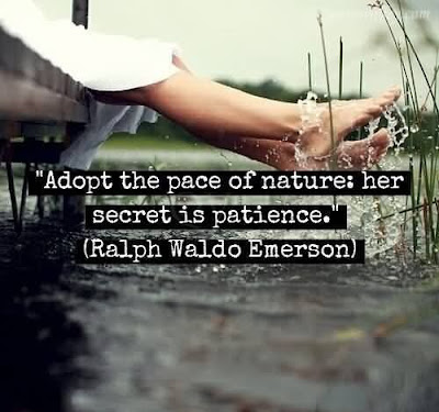 Patience Yoga Quotes