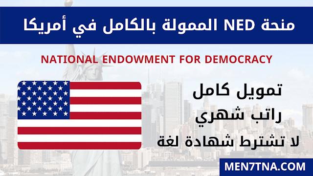 سارع بالتقديم في منحة NED الممولة بالكامل في أمريكا 2021