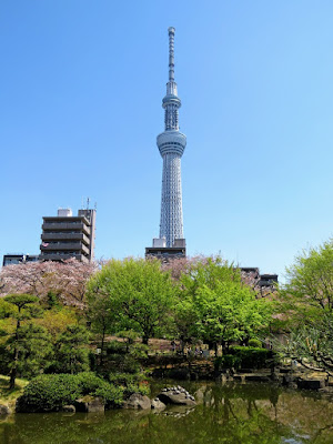 Springtime in Japan: Skytree view in Tokyo's Asakusa neighborhood