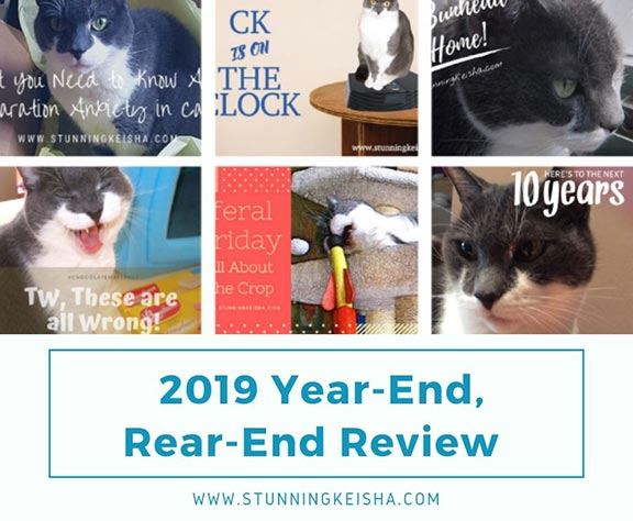 2019 Year-End, Rear-End Review