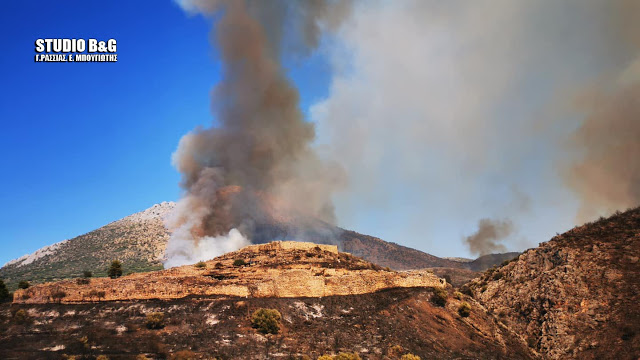 Οι Ενωμένοι Αρχαιολόγοι για την πυρκαγιά στις Μυκήνες