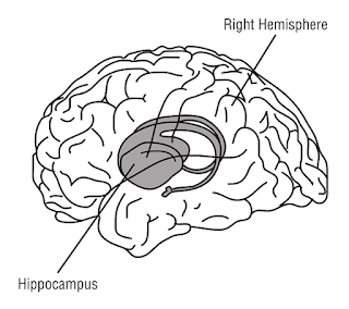 The Second Technique: Consciously controlling the Hippocampus