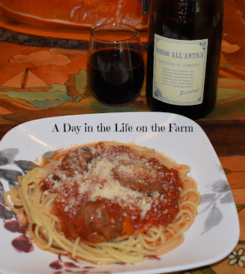 Lambrusco with pasta