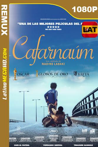 Capharnaüm (2018) Latino HD BDREMUX 1080P - 2018