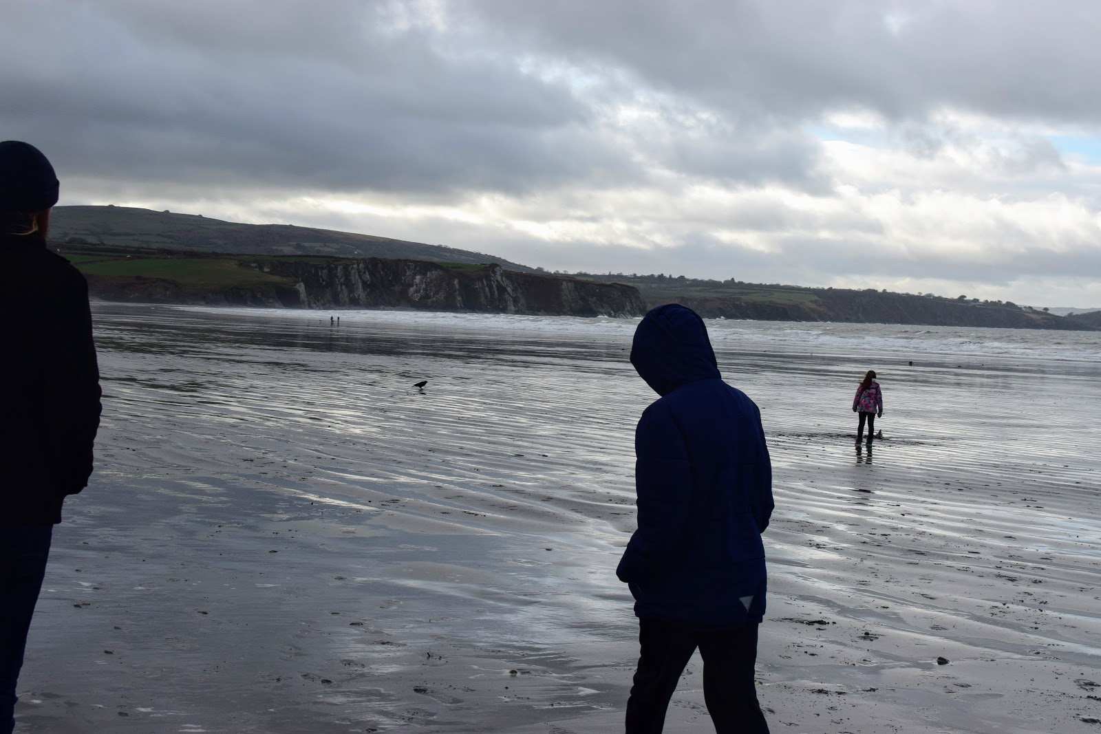 , Clearing the Cobwebs at Newport Sands, Pembrokeshire