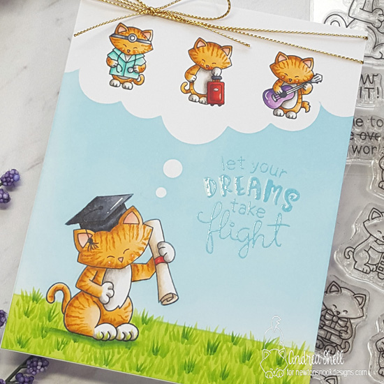 Let your Dreams Take Flight Card by Andrea Shell | Newton's Graduation, Newton Makes a Plan and Uplifting Wishes Stamp Sets by Newton's Nook Designs #newtonsnook #handmade