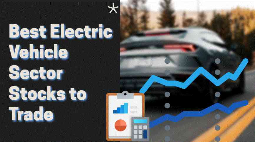 What are the best shares of trading companies in the electric car sector?