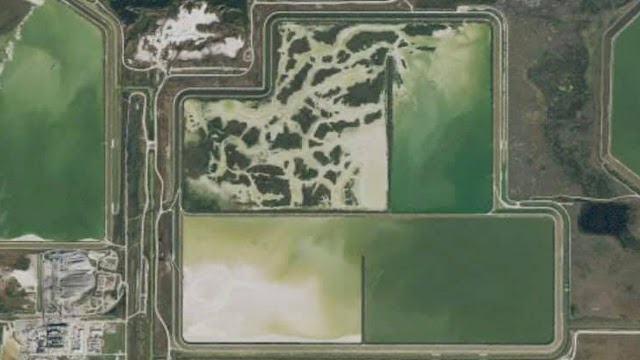 The Power of Adding Fluoride to Florida's Drinking Water
