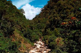 alam, bebas, bushcraft, carstensz, gps, gunung, hutan, imosa indonesia mountain specialist, Knowledge, kompas, navigasi, Perjalanan, Peta, ploting, prinsip, prosedur, sur