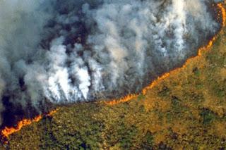 fuego-amazonas
