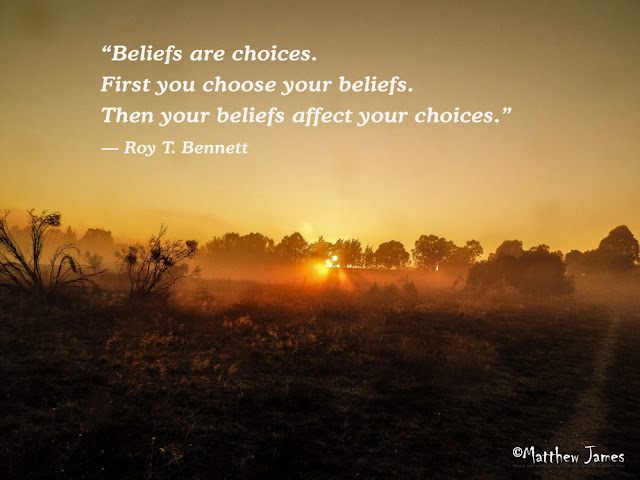 'Beliefs are choices. First you choose your beliefs. Then your beliefs affect your choices.' - Roy.T.Bennett