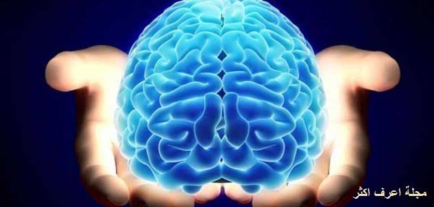 مفهوم القدرات العقلية