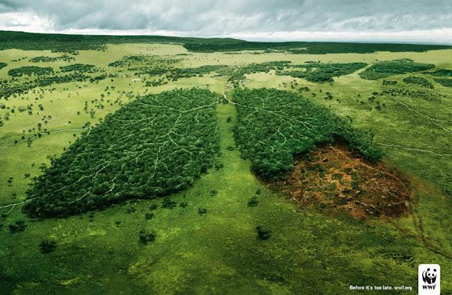 衝撃的でクリエイティブ、世界自然保護基金WWFの面白い広告 森は肺