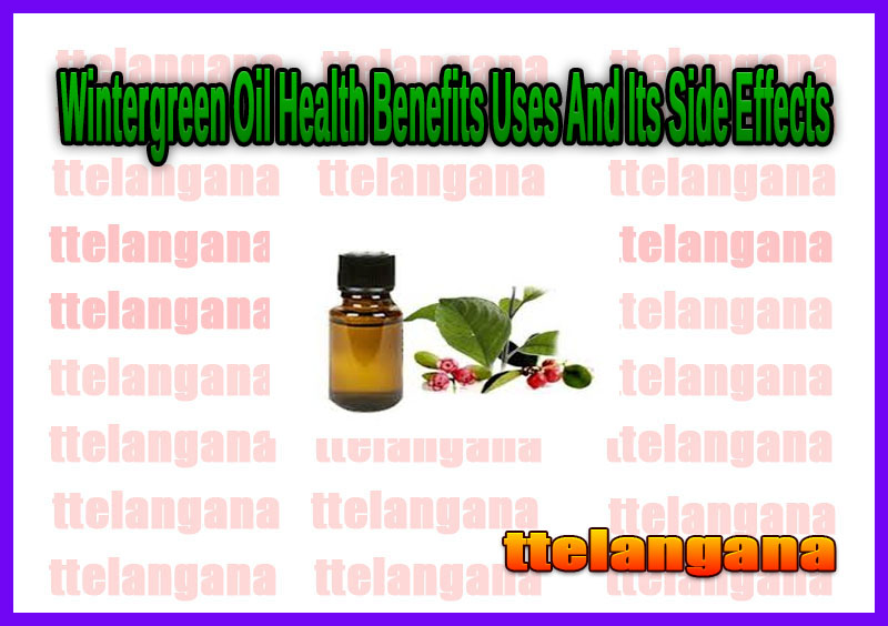 Wintergreen Oil Health Benefits Uses And Its Side Effects