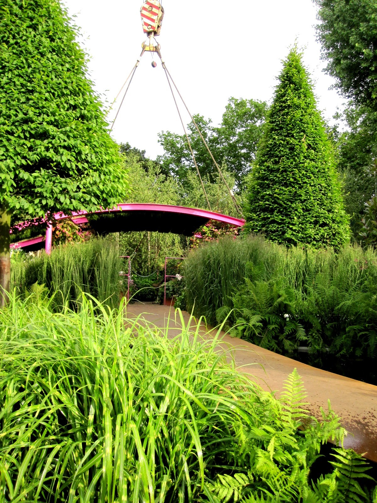 Fi's Growing, Gardening And Design: Chelsea