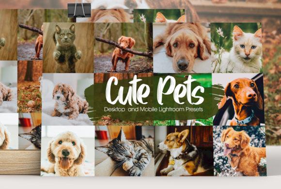 Preset Lightroom dành cho vật nuôi (Mobile/Desktop)