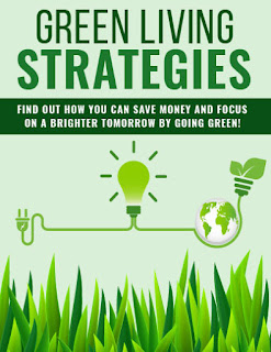 10 Tips How To Looking For Green Living Strategy