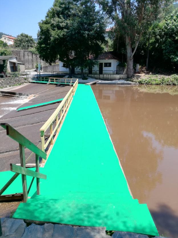Passadiço de Madeira com cobertura verde