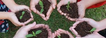 Lingkungan Khusus Perusahaan