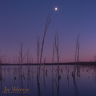 Full Moon rising over the Manasquan Reservoir 'Boneyard'