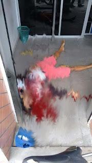 Policial que trabalha no 9º batalhão de Cuité, mata bandido em CG durante tentativa de assalto