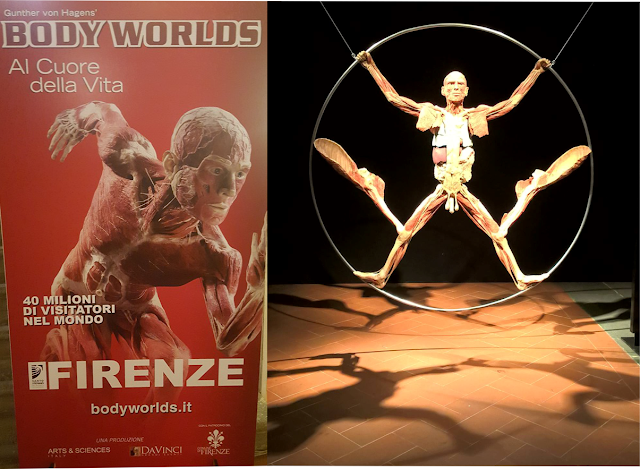 Body Worlds Florencja