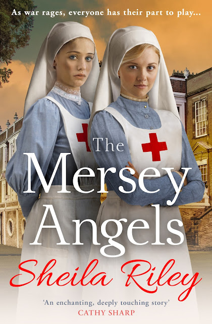 French Village Diaries book review The Mersey Angels Sheila Riley