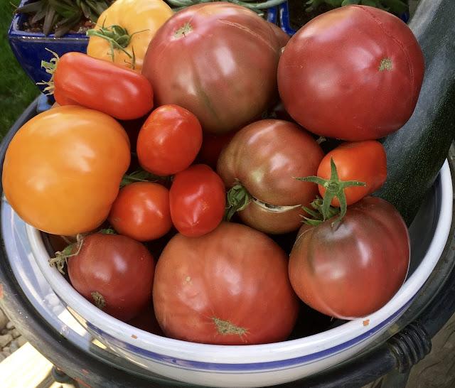 Vegetables Keep you Fuller Longer