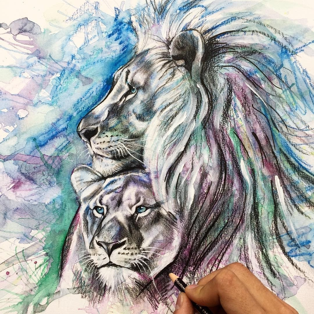 10-Lion-and-Lioness-Liam-James-Cross-Wild-Animals-Drawings-and-Paintings-www-designstack-co