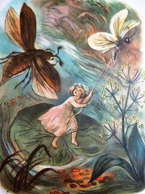 """Calineczka"" ilustracja Jana Marcina Szancera"