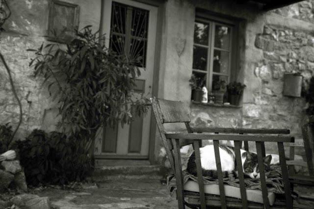 Θεσσαλονίκη: Τον σκότωσαν στην καρέκλα που καθόταν – Άλυτος γρίφος η στυγερή δολοφονία στους Αμπελόκηπους