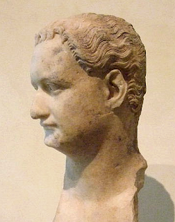 Bust of the Emperor Domitian - Photo of Domitian - derivative work: Steerpike (talk)Domitian_capitoline_profile.png: Steerpike, CC BY-SA 3.0 <https://creativecommons.org/licenses/by-sa/3.0>, via Wikimedia Commons