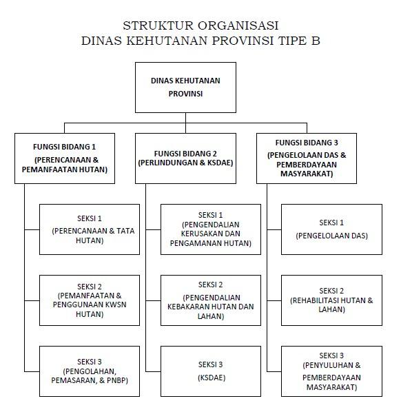 STRUKTUR ORGANISASI DINAS KEHUTANAN PROPINSI TYPE B