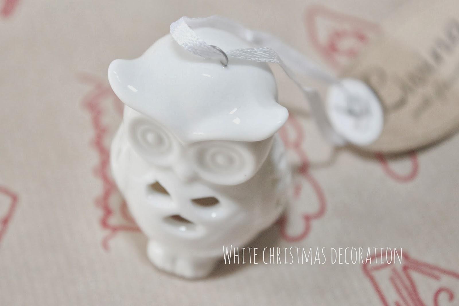 biała sówka