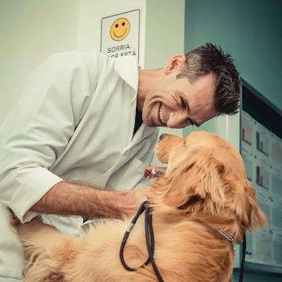 como ensinar o cachorro a não pular nas pessoas, ricardo tamborini, especialista em comportamento canino