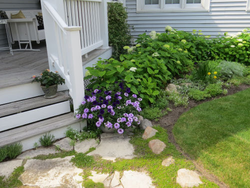 inviting garden with steps
