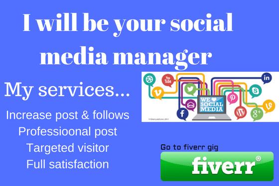 1. Social Media Manager