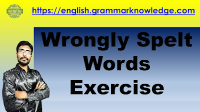 Wrongly Spelt Words Exercise