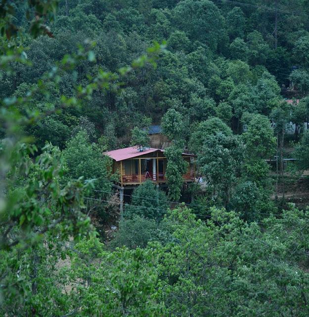 Cottage Nirvana Mukhteshwar the nest tree house