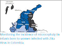 http://sciencythoughts.blogspot.co.uk/2016/12/monitoring-incidence-of-microcephaly.html