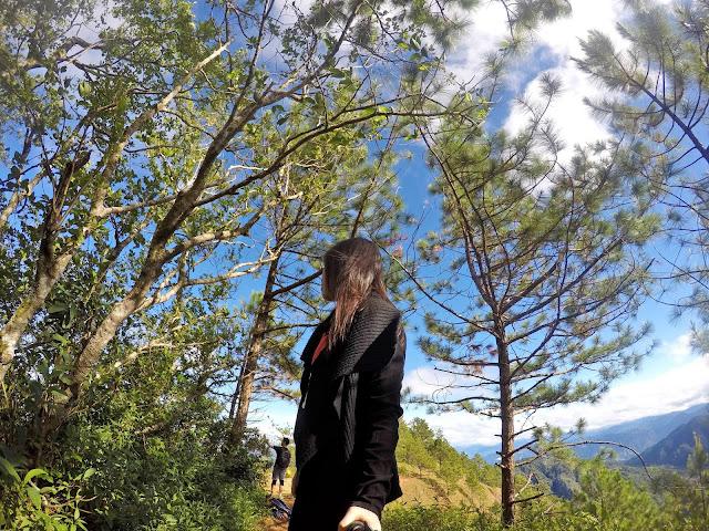 Pine Trees x Mt. Ulap x Rizza Salas