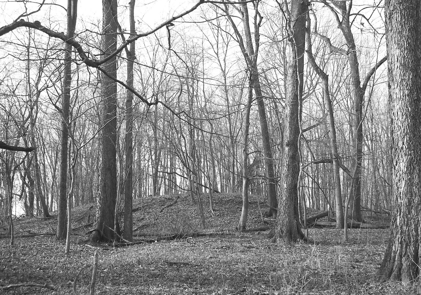 Mound Builders A Travel Guide To The Ancient Ruins In The Ohio - Map of miami county indiana